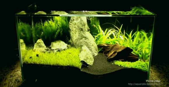 Aquarium Led Beleuchtung Erfahrung Lovely Fluval Edge Mit Extra throughout sizing 1280 X 720