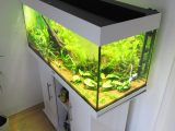 Aquarium Led Beleuchtung Selber Bauen Schullebernds Technikwelt with regard to sizing 1024 X 1365