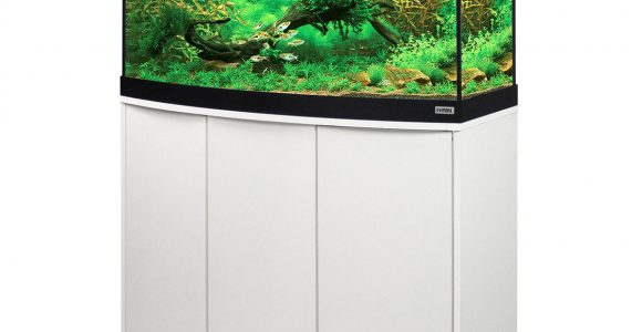 Fluval Panoramaaquarium Mit Led Beleuchtung Vicenza 180 for measurements 1200 X 1200