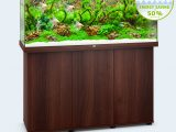 Juwel Aquarium Rio 240 Led with regard to dimensions 1958 X 1958